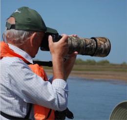 Birdwatching Wildlife Tour Ria Formosa